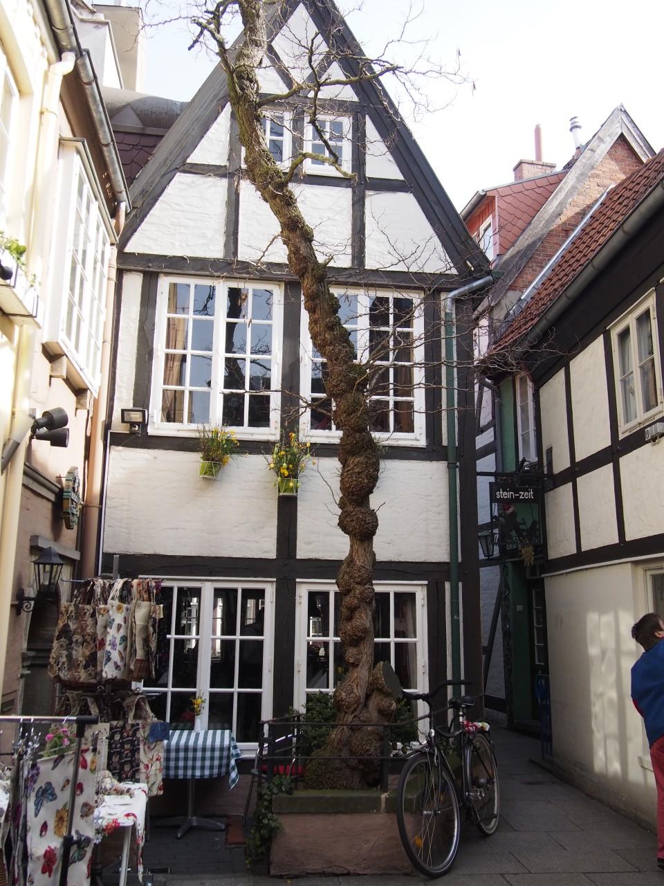 innerhalb des Schnoorivertels in Bremen