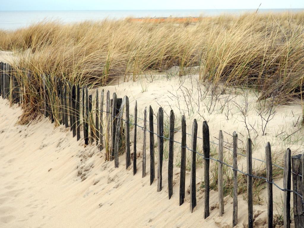 Noordwijk-Strand-Düne