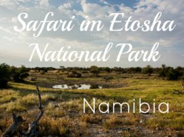 Beitragsbild Namibia