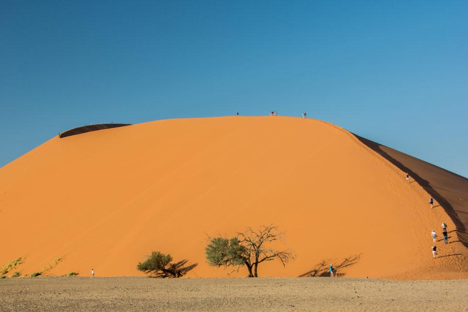 Afrika-Namibia-Wüste-entdecken-Dünen