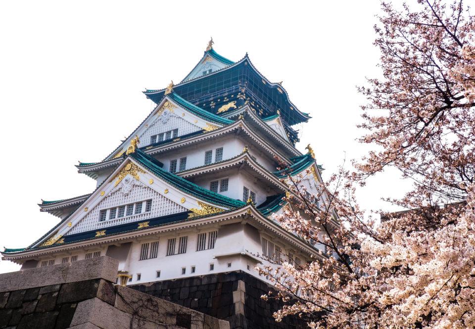 Japan-Osaka-Castle-Kirschblüten