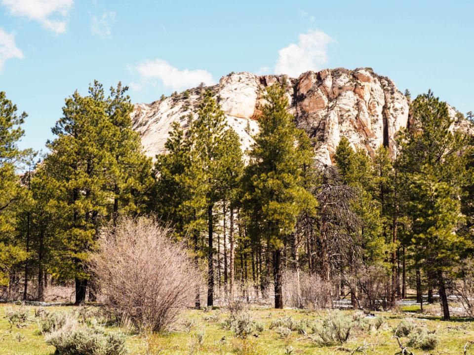USA-Zion-Nationalpark