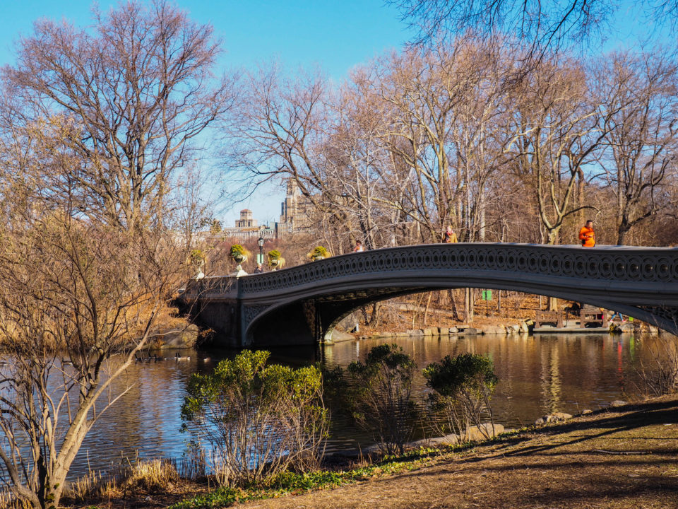 New-York-Central Park-Bow Bridge