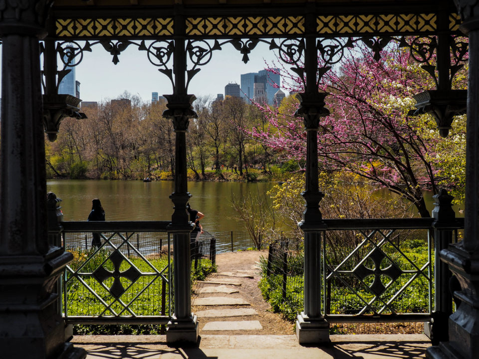 New-York-Central Park-Lady Pavilion