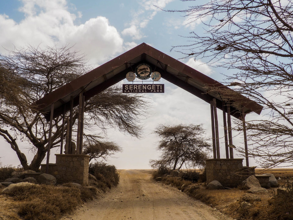 Serengeti-Tansania-safari
