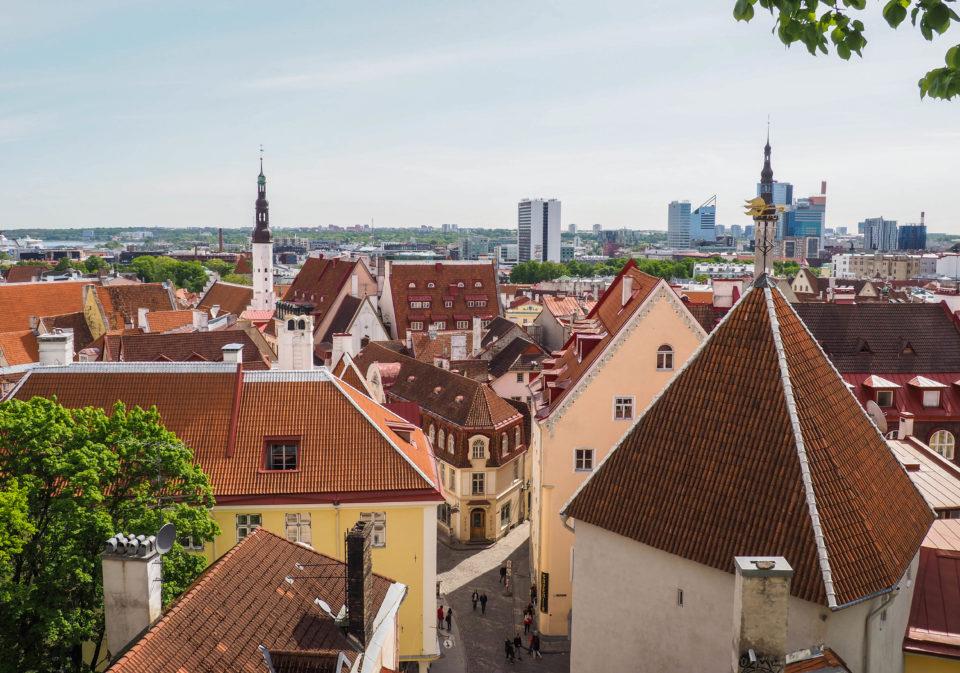 Estland-Tallinn-Altstadt
