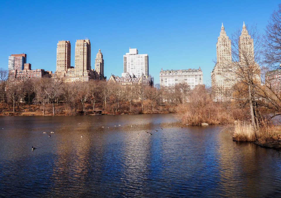 New-York-Central Park-USA