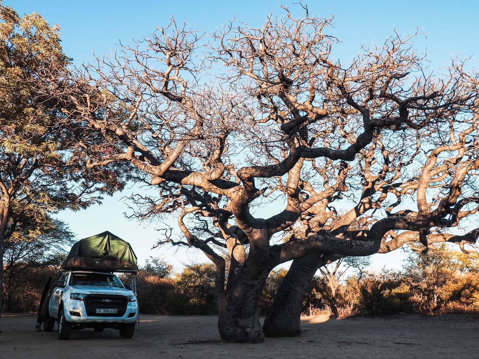 Botswana-Rundreise