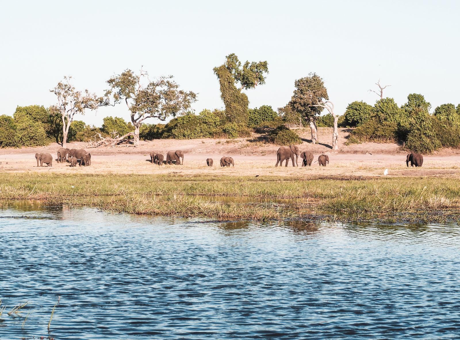 Botswana, Chobe Nationalpark