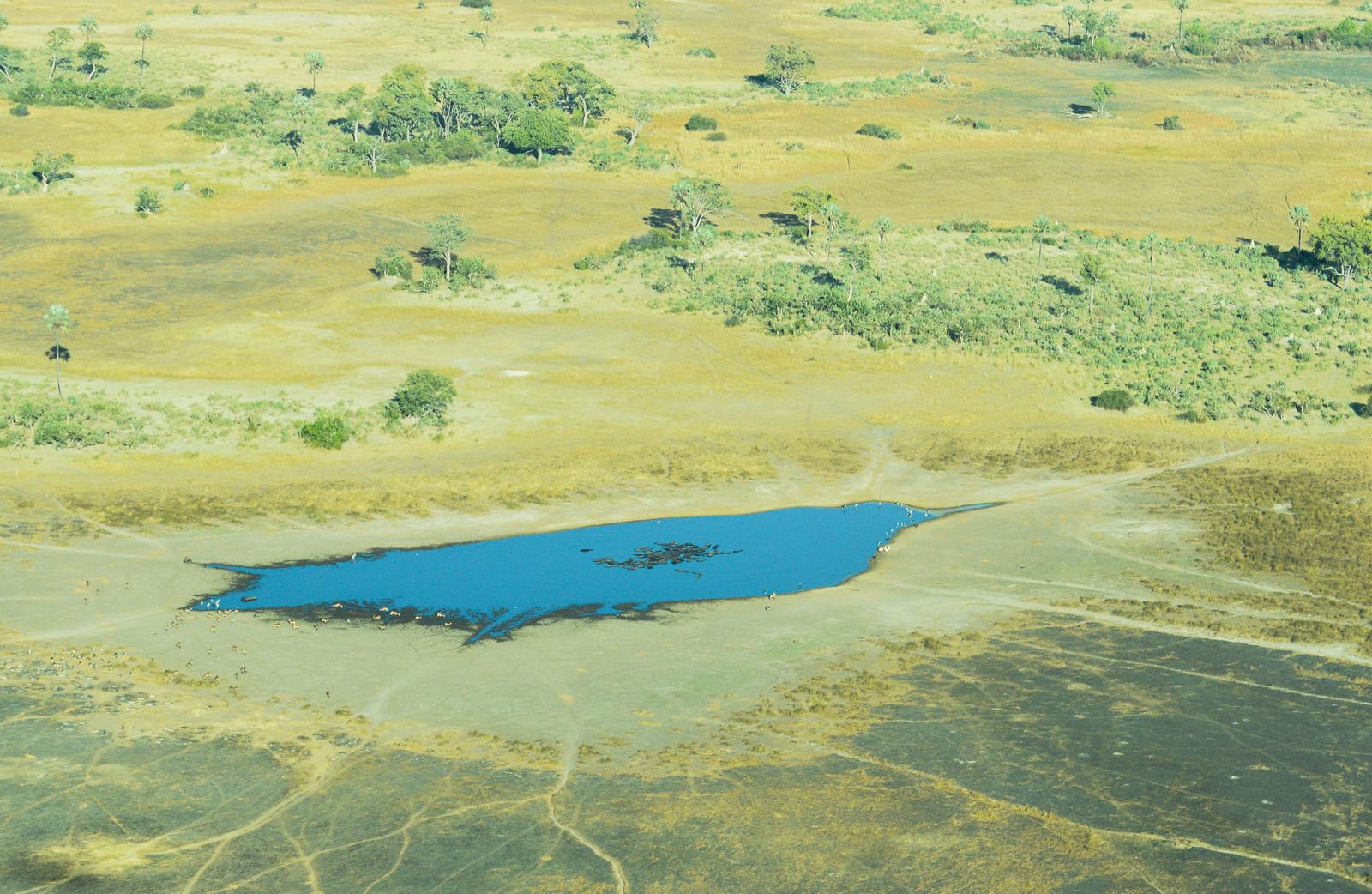 Botswana Rundflug Okavango Delta