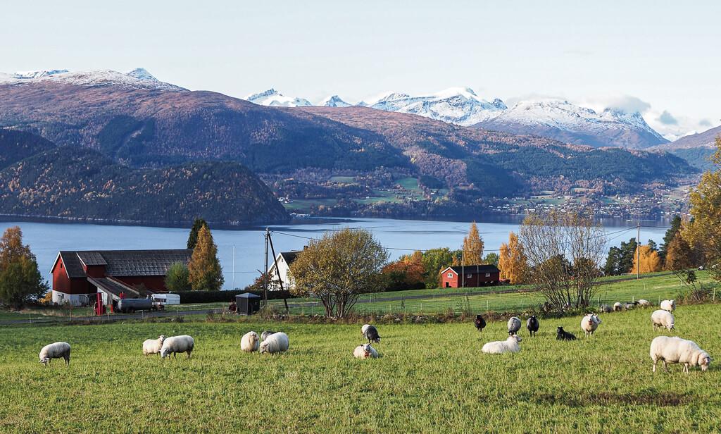 Norwegen, Trollstigen