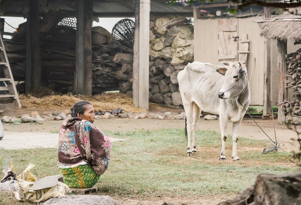 Barauli, Nepal