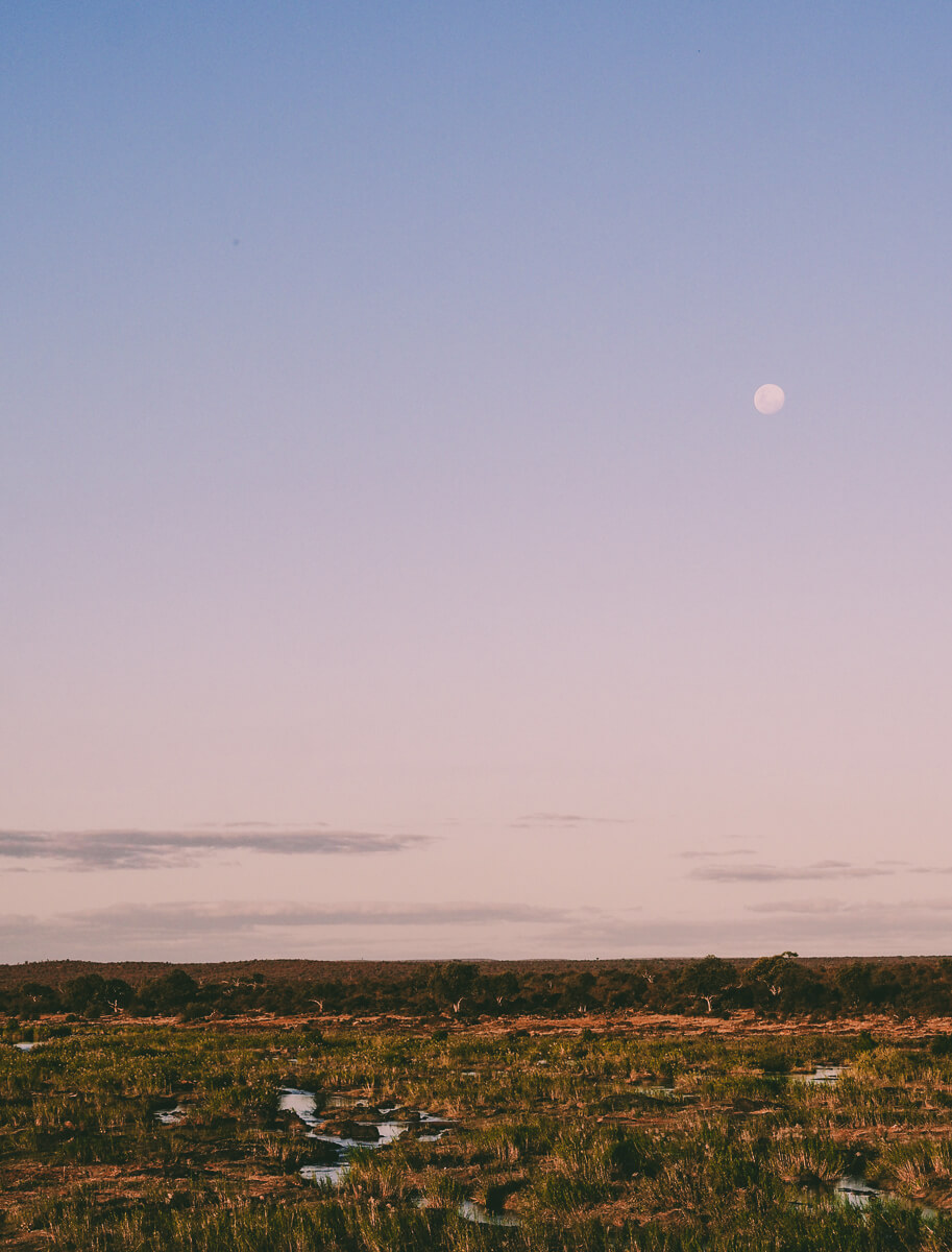 Südafrika Krüger Nationalpark