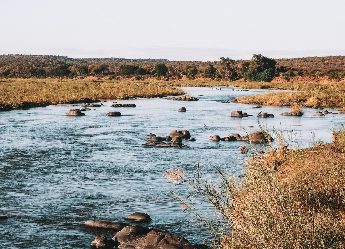 Krüger Nationalpark, Afrika