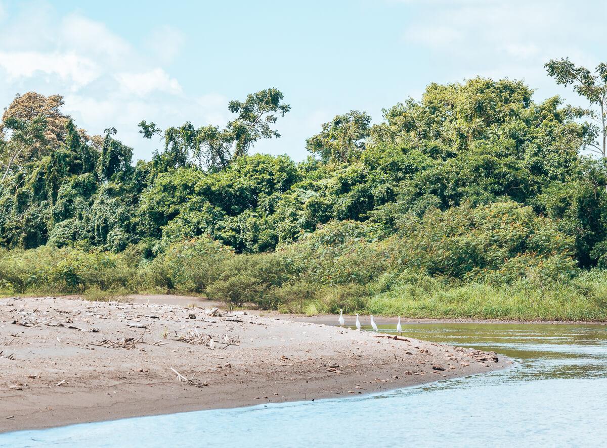 Auf dem Weg in den Tortuguero Nationalpark