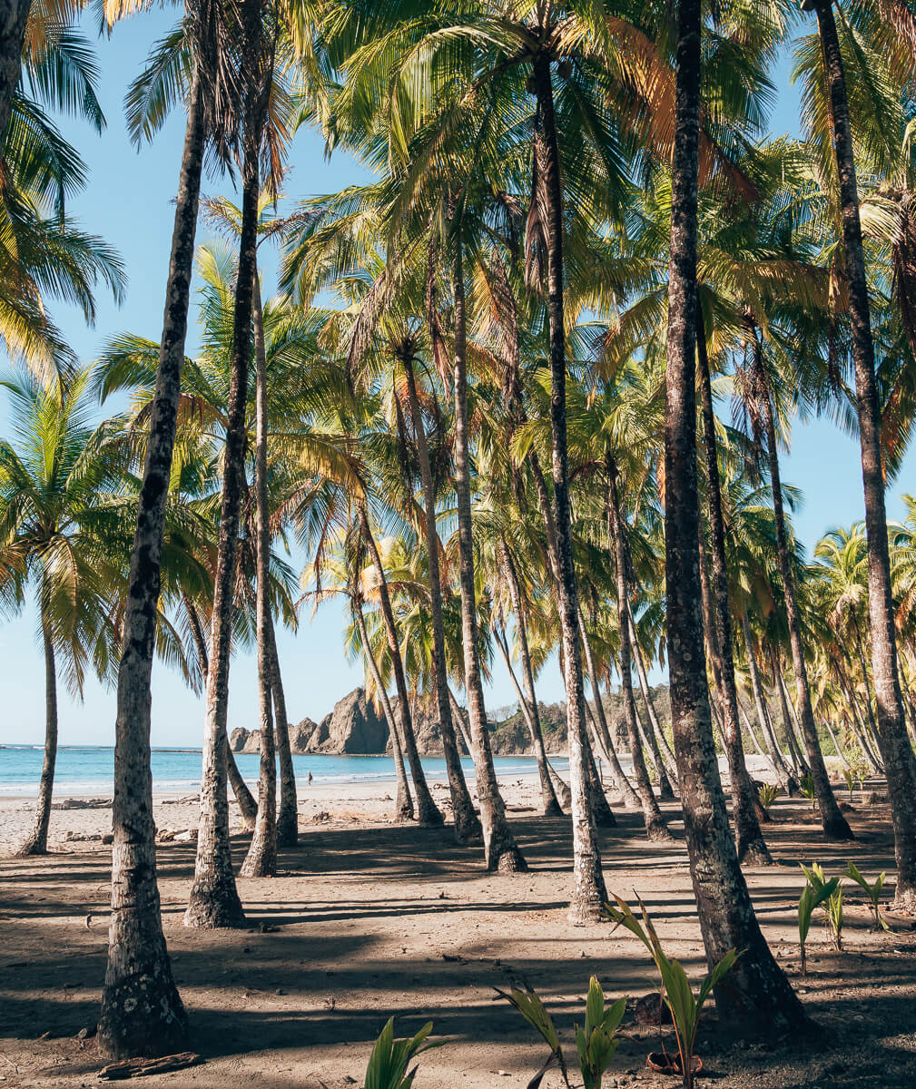 Costa Rica-Samara-Carrillo